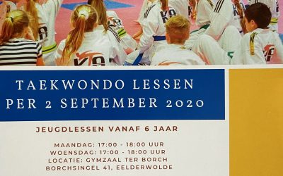 Taekwondo lessen in ter Borch starten per 2 september